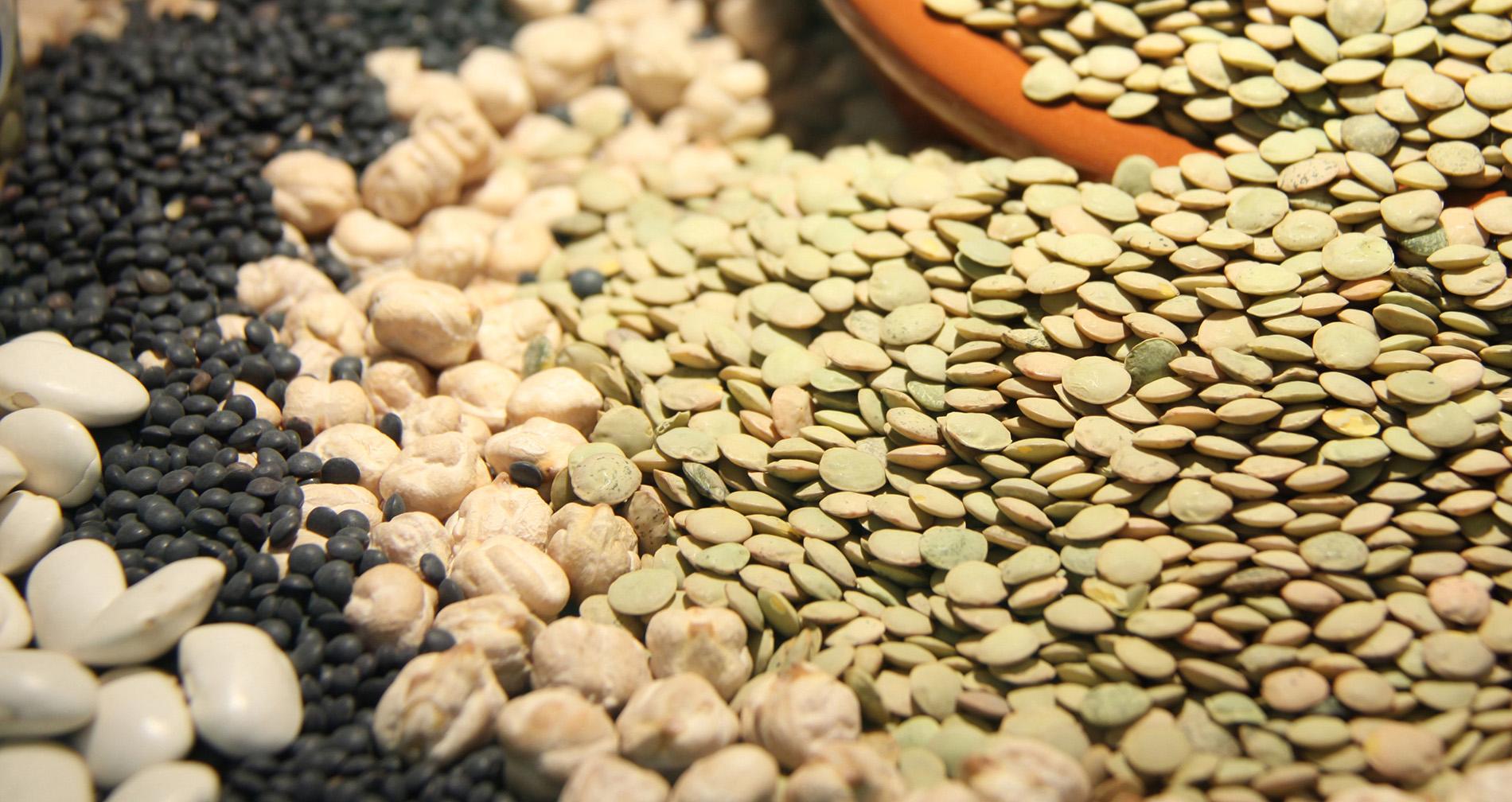 4.-Las legumbres aportan importantes beneficios para la salud