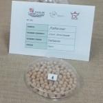 Exposición sobre las legumbres en el Instituto Alfonso IX de Zamora