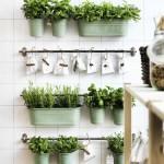 Beneficios de tener un huerto en casa